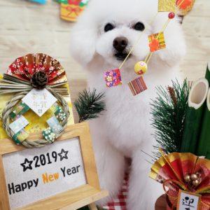 ☆1月の定休日のお知らせ☆