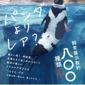 2019/4/27(土)〜5/6(月・振休) アクアマリンふくしまGWイベント