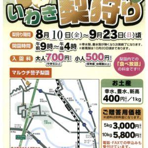 "H30/8/10(金)~9/23(日)頃""いわき梨狩り"""