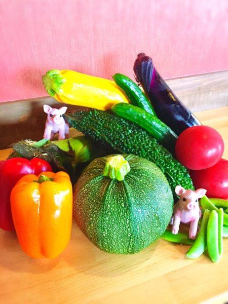 夏野菜メニュー始めました🍅🥒🌽🍆🌶