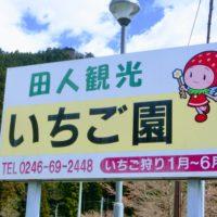 田人観光いちご園|田人のいちご狩り