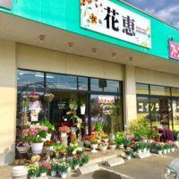花恵|いわき市小名浜の花屋