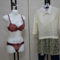 暮らしの衣料プリンⅠ・Ⅱ