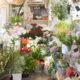 Flower shop ことはな|いわき市泉テラスのお花屋さん